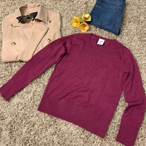 GAP Petite 100% Merino Wool crewneck sweater